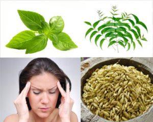 Ayurvedic herbs for lungs & sinusitis remedies have anti-allergic