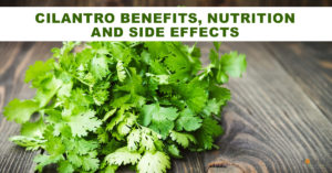 Cilantro may provide health benefits in reducing the risk of heart disease
