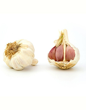 Garlic is an effective and powerful natural medicine used for centuries. Eating garlic in moderation can provide a wide variety of health benefits.