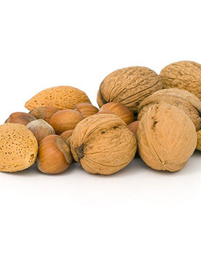 HazelNut Benefits:Celiac Disease   Brain   Cancer   Heart Diseases   Anemia   High Cholesterol   Obesity   Antioxidation   Bones  Hazelnuts (called as filbert nuts or cobnuts depending on the species) are sweet and nutritious nuts derived from the Betulaceae family of trees.These nuts are rich in monounsaturated fatty acids
