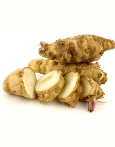 Jerusalem Artichoke tubers are rich in non-starchy carbohydrates inulin