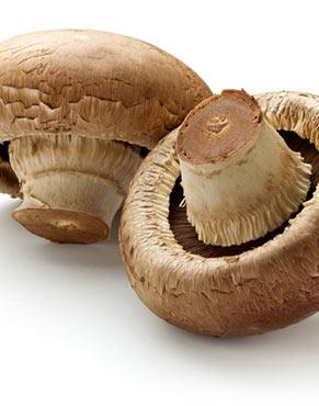 Mushrooms are high in antioxidants