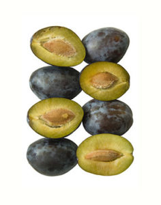 Health benefits of Plums in nutrition as natural medicine supported by science & research