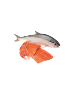 Health benefits of Salmon in nutrition as natural medicine supported by science & research