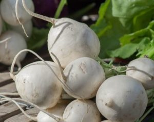 Turnips are rich in nutrients and low in calories. Health benefits include a healthier heart